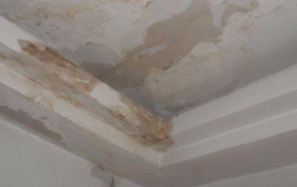 天花板渗漏怎么办?